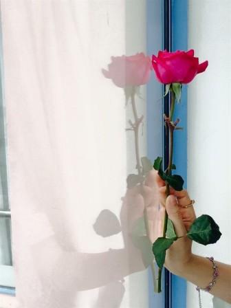 Vụ người vợ mang thai tự tử: Sao em không nằm xuống nghỉ và ngủ một giấc thôi?