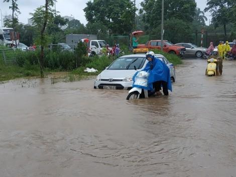 Nghề đặc biệt hốt bạc triệu trong ngày Hà Nội ngập lụt