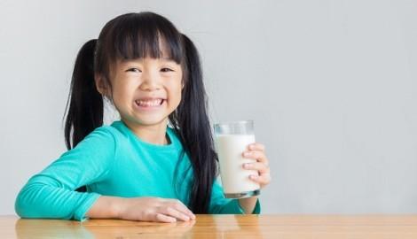 Chọn sữa tươi chuẩn của Hà Lan