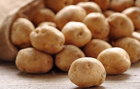 Hậu quả khôn lường khi mua nhầm khoai tây