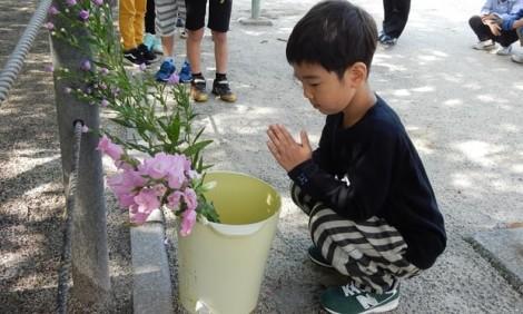 Trẻ em Nhật Bản được học về trách nhiệm kể mãi 'nỗi đau bom nguyên tử' ra sao?