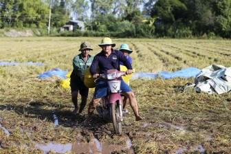 Người nông dân đang bị bỏ quên: Nông dân bỏ ruộng ngày càng nhiều