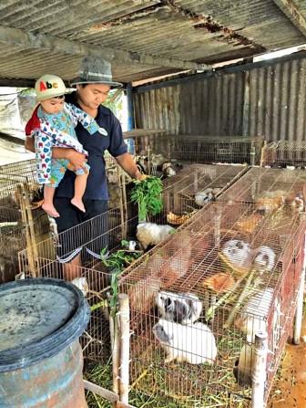 Quang Thảo, Thanh Tuấn mê trồng cây, tắm heo