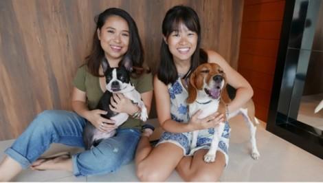 Châu Á bùng nổ dịch vụ sang chảnh cho thú cưng