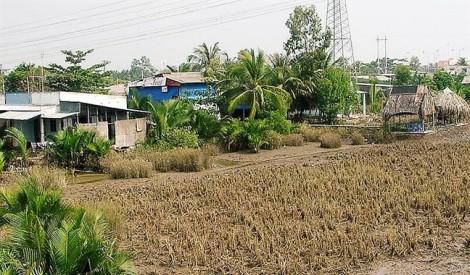 TP.HCM: Hàng loạt dự án bất động sản nguy cơ bị thu hồi vì 'xí' đất không chịu làm