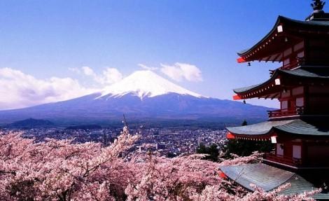 Ngừng khai thác tour đến Nhật Bản do bão Jebi