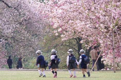 Sắc màu tươi mới của mùa tựu trường trên thế giới