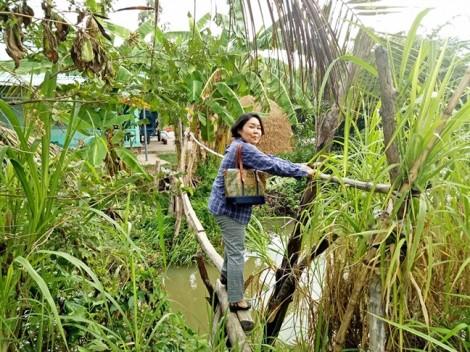 Bài 3: Mayu Ino, 'chị hùng' của người làm nông
