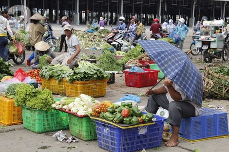 Nhiều loại nông sản, thực phẩm tăng giá theo xăng
