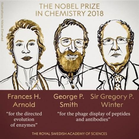 Nobel Hóa học 2018 trao cho công trình nghiên cứu kiểm soát tiến hóa