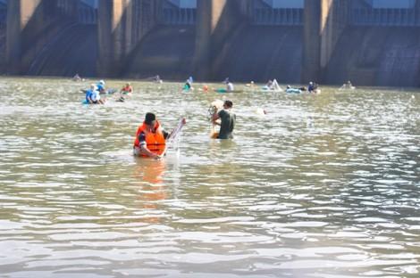 Người dân đổ xô đi bắt cá 'khủng' khi thủy điện Trị An ngưng xả lũ