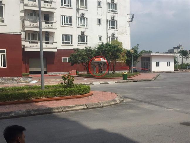 Phat hien thuoc no gai trong cay ATM o Quang Ninh