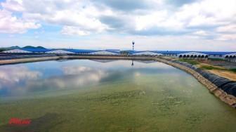 Thừa nhận trại heo khổng lồ xây không phép ngay đầu nguồn cấp nước