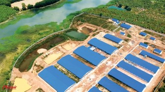 Khi nào cưỡng chế trại heo khổng lồ xây không phép sát hồ Trị An?