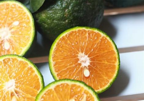 Hiệu quả bất ngờ khi mỗi ngày bạn uống một ly nước cam sành