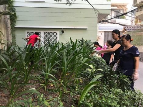 Quận 4: Xây dựng bồn cây thay điểm rác
