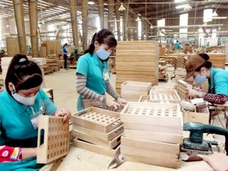 Doanh nghiệp Việt lạc quan trước Hiệp định CPTPP