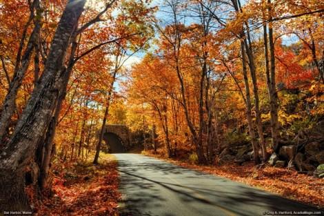 10 điểm đến hoàn hảo để tận hưởng vẻ đẹp mùa thu nước Mỹ