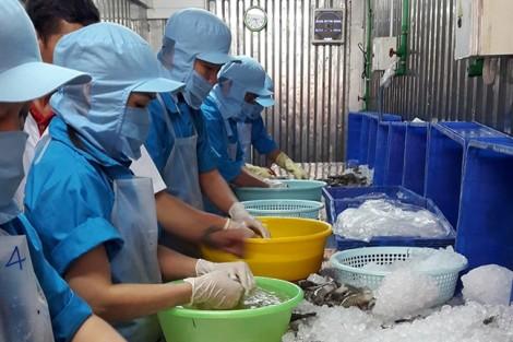 Các hiệp định thương mại tự do giúp Việt Nam đạt thặng dư trên 6 tỷ USD