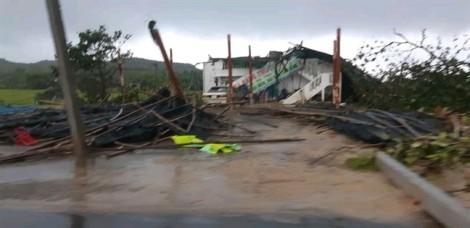 Lốc xoáy ở gành Đá Đĩa - Phú Yên làm 13 khách du lịch từ TP.HCM bị thương