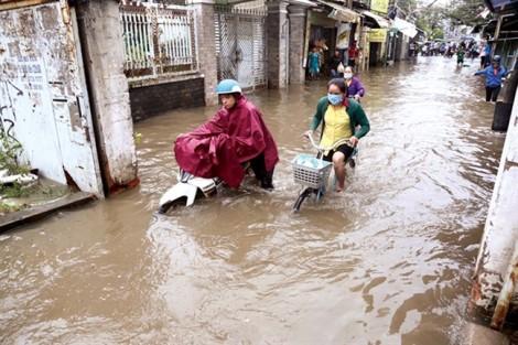 Cảnh giác với các bệnh dị ứng mùa mưa
