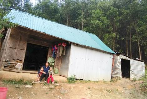 Nữ tiều phu gồng gánh nuôi chồng và hai con bạo bệnh trong rừng