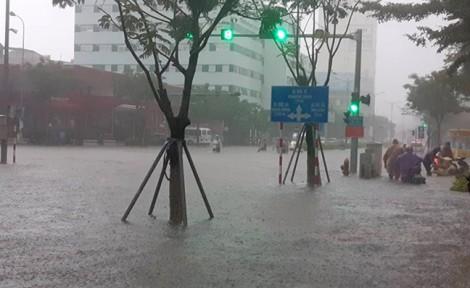 Đà Nẵng ngập lịch sử, ô tô 'chết' la liệt trên đường