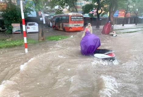 Hàng trăm ha rau màu, thủy sản bị ngập nặng do mưa lớn ở Nghệ An
