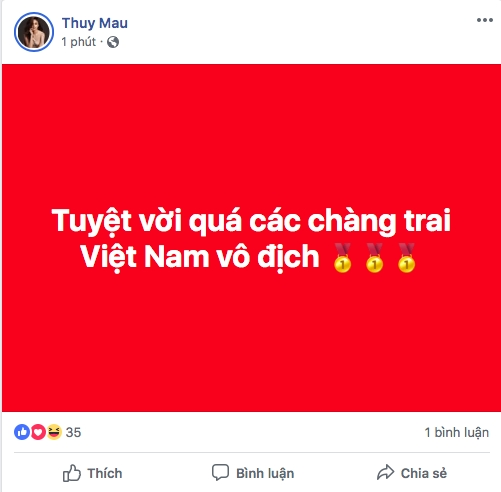 Nghe si Viet tung bung mung Viet Nam vo dich AFF Cup sau 10 nam cho doi