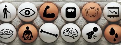 Với 12 lợi ích này dù ghét trứng gà cũng cố gắng ăn