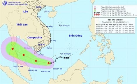 Bão số 1 cách đất liền 460km, Cà Mau và Bạc Liêu cấm biển