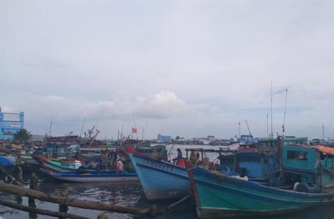 Hàng chục nghìn tàu thuyền các tỉnh ĐBSCL về tránh bão số 1