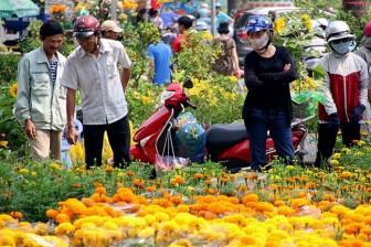 Chợ hoa, giỏ quà nông sản vào mùa