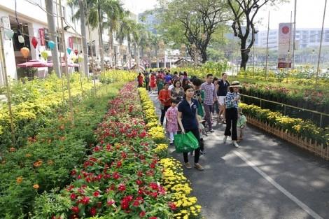 Hội chợ hoa xuân Phú Mỹ Hưng 2019: Nô nức trẩy hội ngày xuân