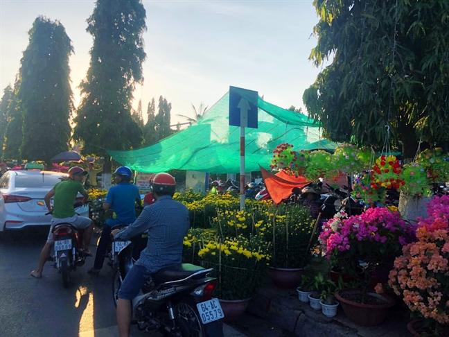 'Check in tet' tu Vinh Long: Mai vang khoe sac ben song Tien