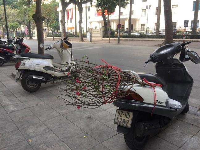 'Check in' tet Ha Noi: thu do vang tanh ngay cuoi nam