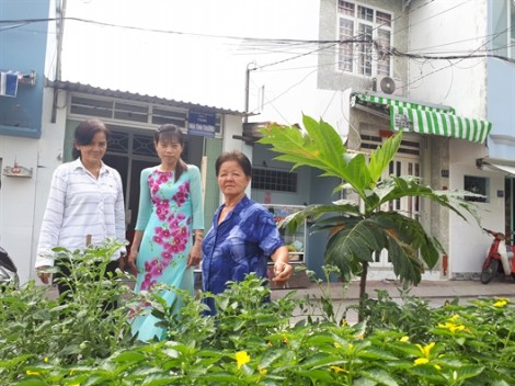 Hội viên chung tay cải thiện môi trường sống