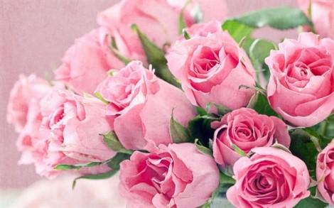 Ngày 8 tháng 3, không hoa hồng chẳng phải hết yêu...
