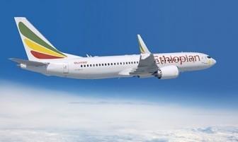 Hiện chưa có hãng hàng không nào của Việt Nam khai thác Boeing 737 Max
