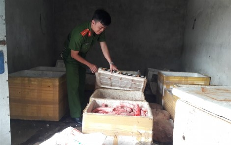 Đà Nẵng: Bắt quả tang cơ sở biến nội tạng thối thành mồi nhậu