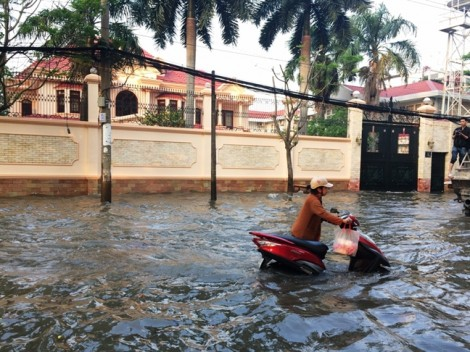 Bất đồng về nâng đường chống ngập 'khu đại gia' Sài Gòn