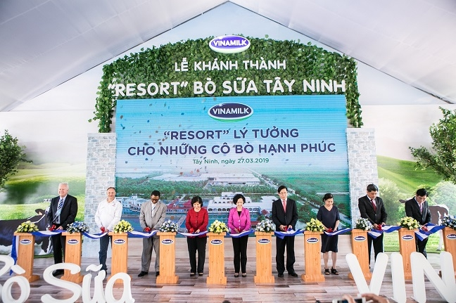 Resort bo sua Vinamilk Tay Ninh – Ngoi nha ly tuong cua nhung co bo hanh phuc