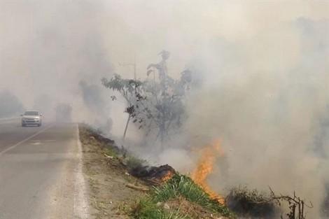 Ô nhiễm không khí nặng ở Chiang Mai, Thủ tướng ra lệnh xử lý trong vòng 7 ngày