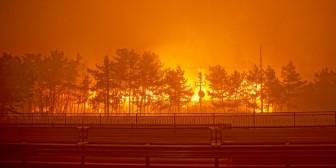 Nghệ sĩ Kpop tích cực quyên góp và hoãn lịch trình sau thảm họa cháy rừng
