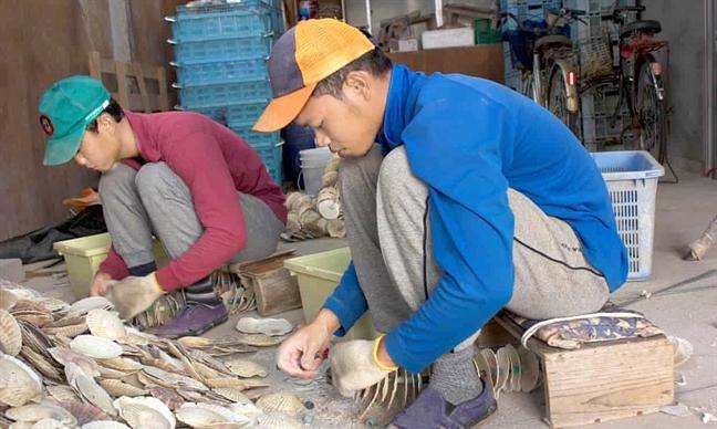 Chuyen lao dong nhap cu o Nhat Ban