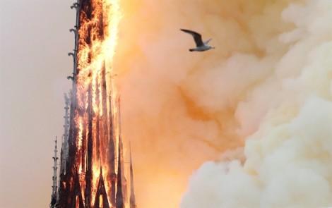 Nhiều sao thế giới đau lòng trước vụ cháy Nhà thờ Đức Bà Paris