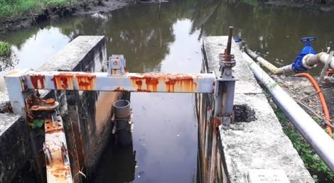 TP. Hồ Chí Minh: Triều lên lộ ra những công trình hư hỏng