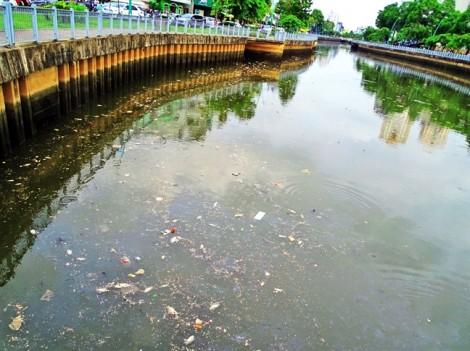 Cá chết, lộ 'tử huyệt' trong  cuộc chiến chống ô nhiễm ở Sài Gòn
