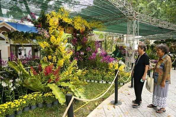 Chiem nguong hang tram loai hoa khoe sac o Festival hoa lan TP.HCM