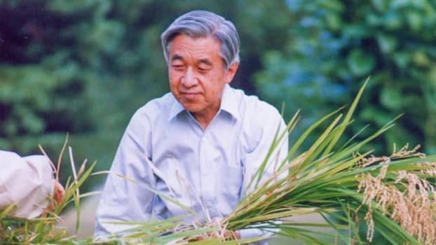 Hoang de Akihito va nhung no luc dua hoang gia Nhat Ban den voi nguoi dan, the gioi